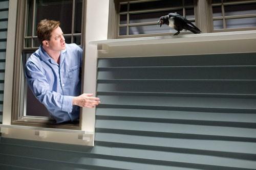 Brendan Fraser e un animale vendicativo del film Puzzole alla riscossa
