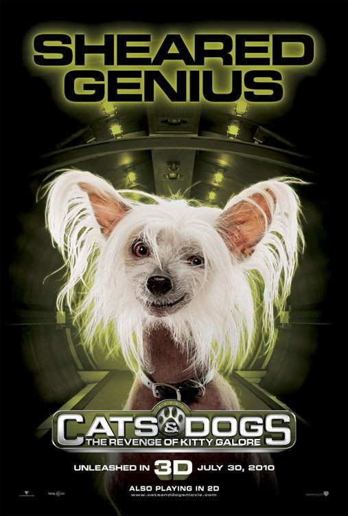Character Poster (Sheared Genius) per Cats & Dogs: The Revenge of Kitty Galore