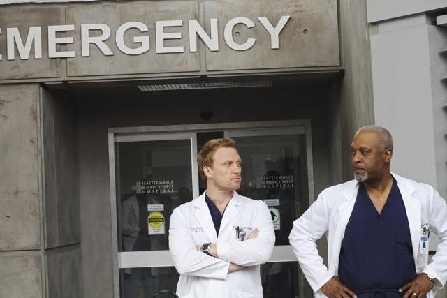 Grey's Anatomy: Kevin McKidd e James Pickens Jr. nell'episodio How Insensitive