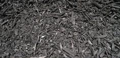 Il carbone, elemento protagonista del film Le quattro volte