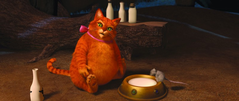 Un incredibile Gatto con gli Stivali dal film Shrek e vissero felici e contenti