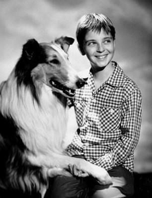 Lassie e il piccolo protagonista del serial