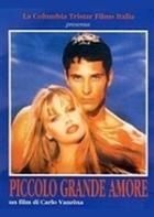 La copertina di Piccolo grande amore (dvd)
