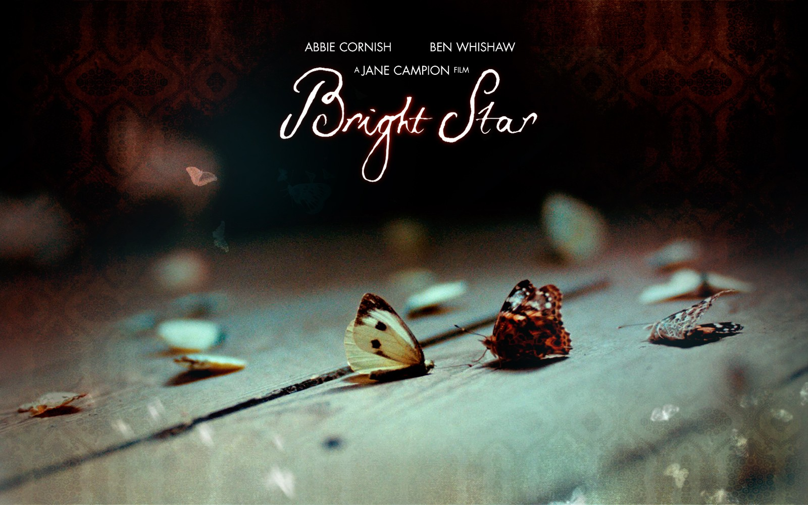Wallpaper di Bright Star