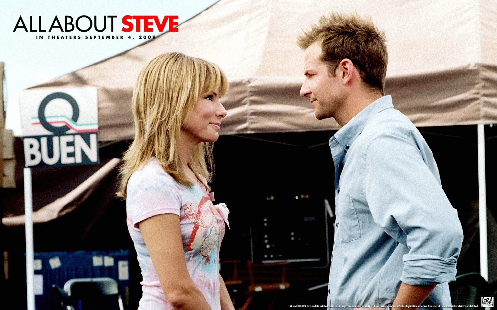 Poster di All About Steve