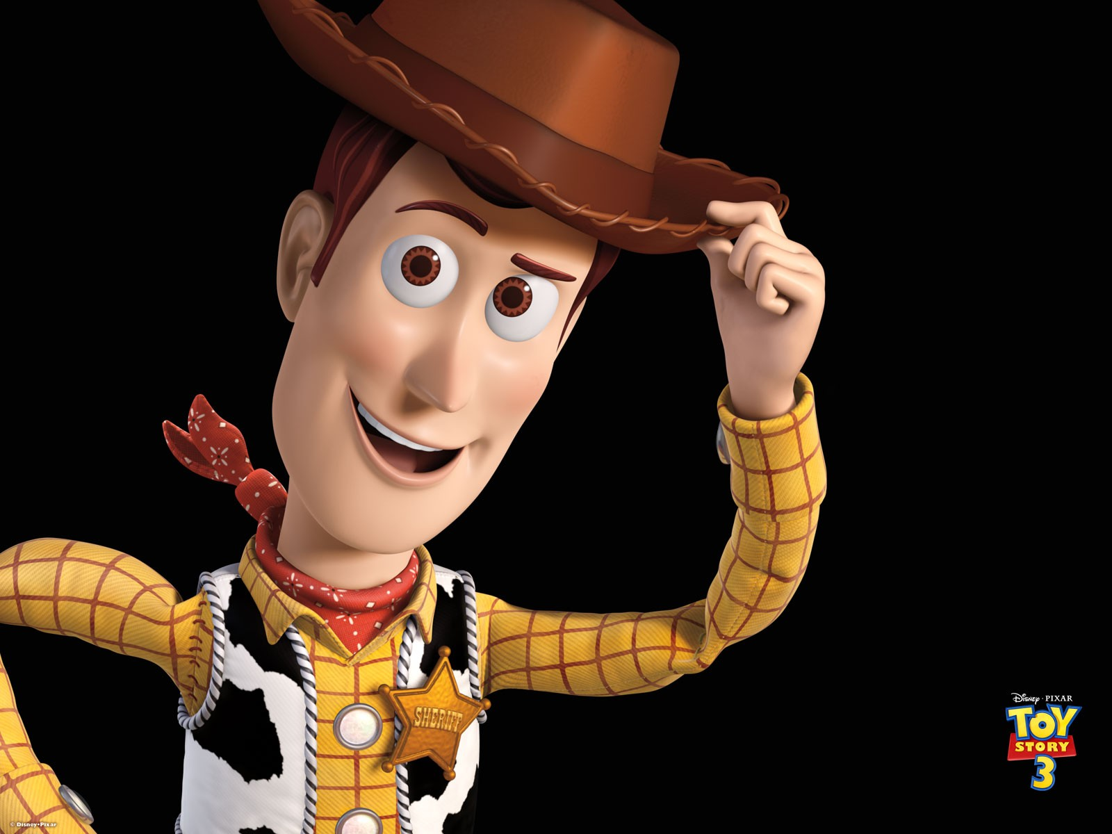 Poster di Woody per Toy Story 3