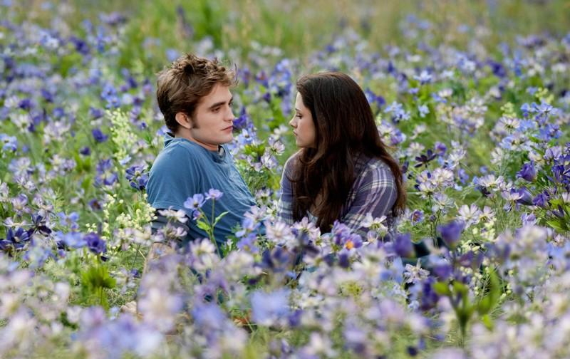 Una foto tratta da The Twilight Saga: Eclipse con Robert Pattinson e Kristen Stewart nella radura fiorita