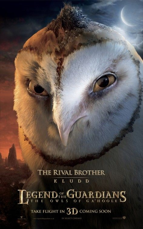 Character poster per Legend of the Guardians - The Rival Brother