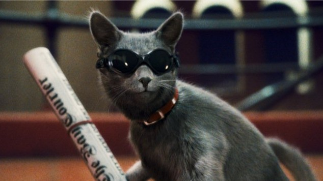 Primo piano di Catherine dal film Cats & Dogs: The Revenge of Kitty Galore