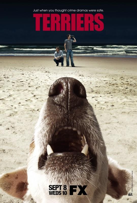 Un poster della serie Terriers
