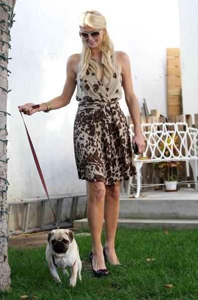 Paris Hilton a spasso con il suo cagnolino
