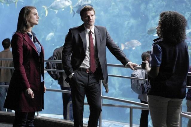 Emily Deschanel, Tembi Locke e David Boreanaz nell'episodio The Predator in the Pool di Bones