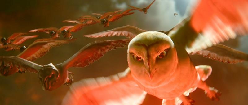 Il volo dei gufi ne Il regno di Ga'Hoole: la leggenda dei guardiani