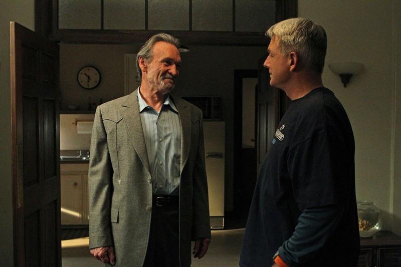 Muse Watson e Mark Harmon in una scena dell'episodio Spider and the Fly di NCIS