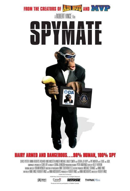 La locandina di Spymate