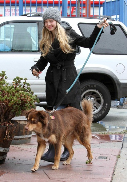 Amanda Seyfried porta il suo cane al The Dog House di Los Angeles