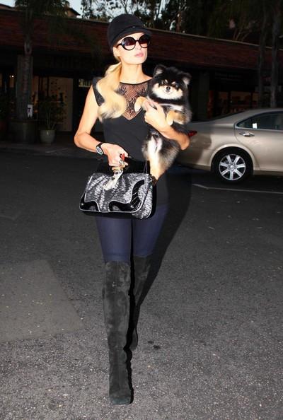 Paris Hilton fa shopping con il suo cane al Beverly Glen Mall di Los Angeles