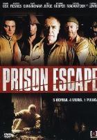 La copertina di Prison Escape (dvd)