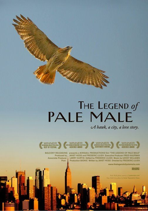 La locandina di The Legend of Pale Male