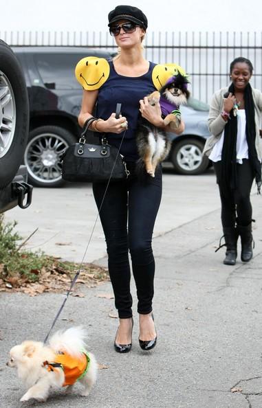 Paris Hilton dopo aver fatto acquisti di Halloween per i suoi cani da 'Trashy Lingerie'
