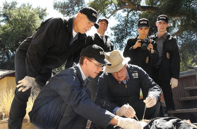 La squadra esamina un cadavere nell'episodio Royals and Loyals di NCIS - Unità anticrimine