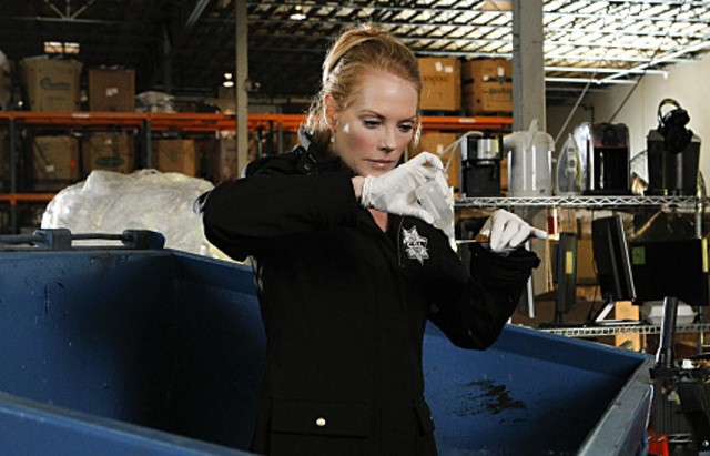 Marg Helgenberger in CSI: Scena del crimine nell'episodio Bump & Grind