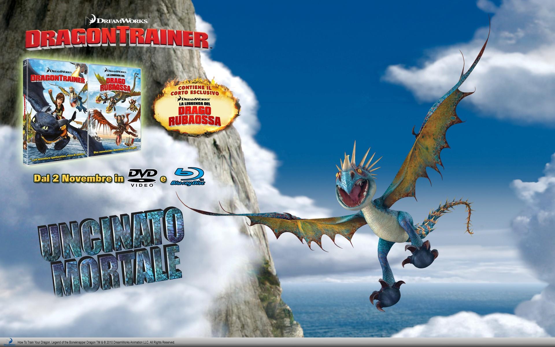 Un wallpaper dedicato all'uscita in DVD e Blu-Ray di Dragon Trainer