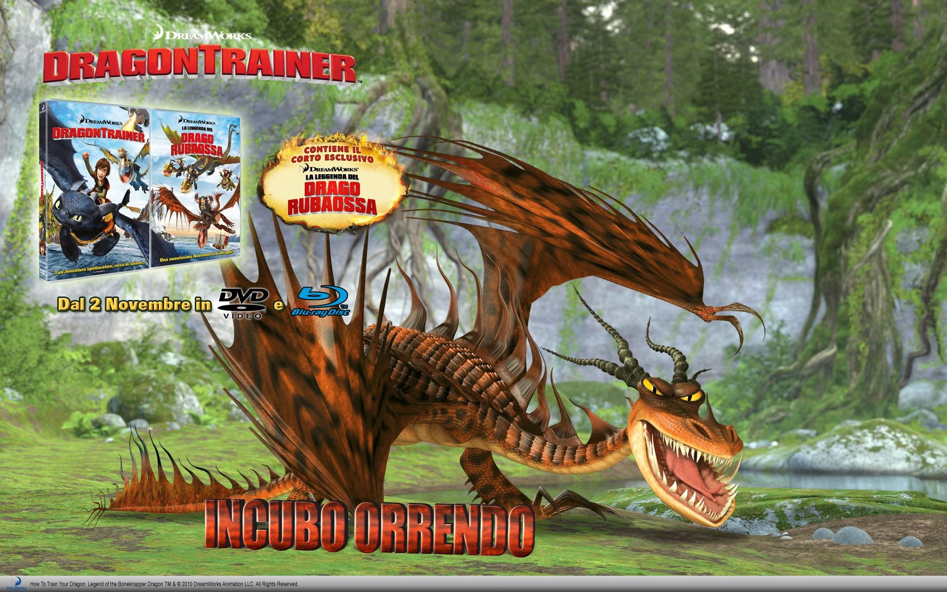 Un wallpaper dedicato all'uscita in DVD e Blu-Ray di Dragon Trainer, prevista il 2 Novembre 2010
