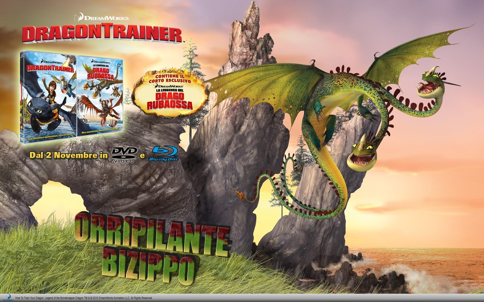 Un wallpaper per l'uscita in DVD e Blu-Ray di Dragon Trainer
