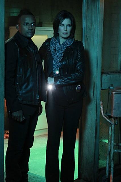 Sela Ward e Hill Harper in CSI: New York, nell'episodio Scared Stiff