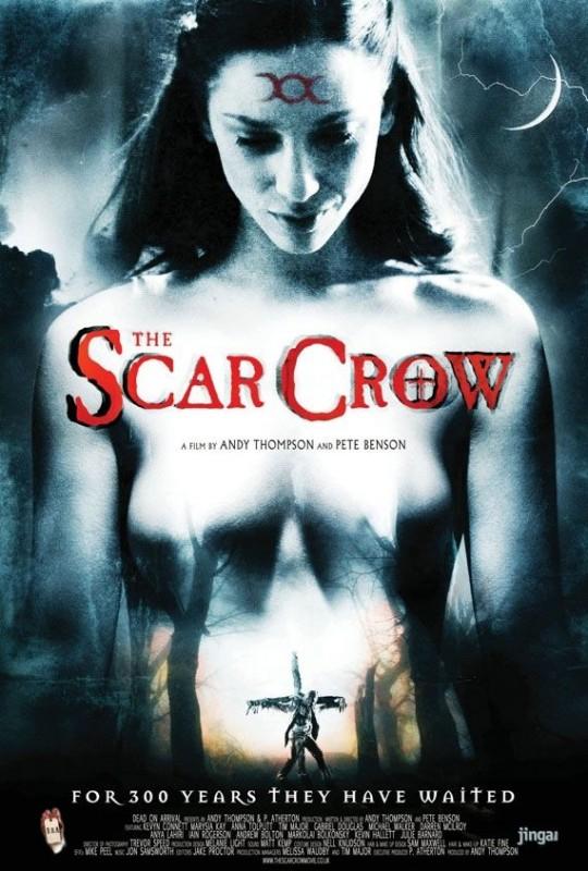 La locandina di The Scar Crow