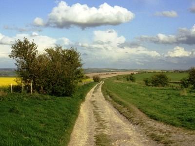 Un paesaggio inglese immortalato nel documentario Robinson in Ruins