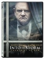 La copertina di Into the Storm (dvd)