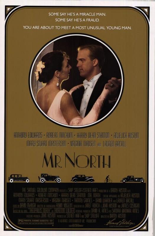 La locandina di Mr. North