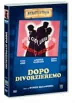 La copertina di Dopo divorzieremo (dvd)