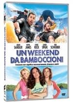 La copertina di Un weekend da bamboccioni (dvd)