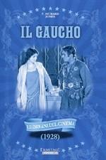 La copertina di Il gaucho (dvd)