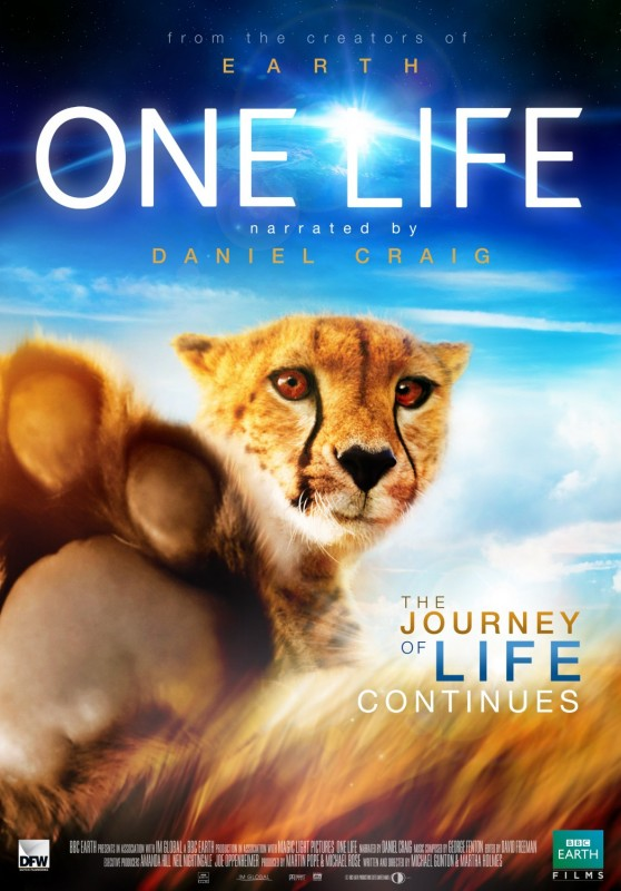 La locandina di One Life