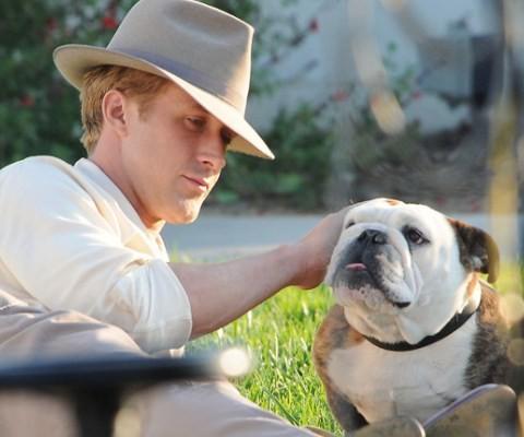 Ryan Gosling e il simpatico bulldog di The Gangster Squad