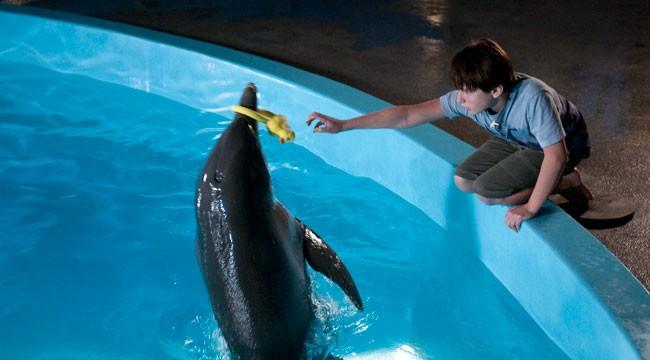 L'incredibile storia di Winter il delfino: Nathan Gamble e il suo amico delfino giocano in acqua