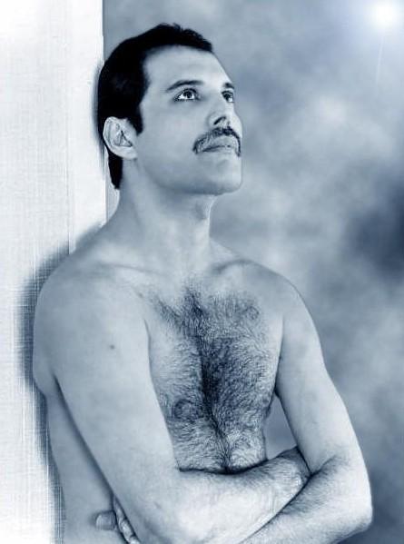 Freddie Mercury, una foto del cantante