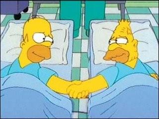 """Una sequenza dell'episodio Homer Simpson in """"Problemi di reni ( Stagione 10 - I Simpson )"""