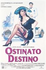 La copertina di Ostinato destino (dvd)
