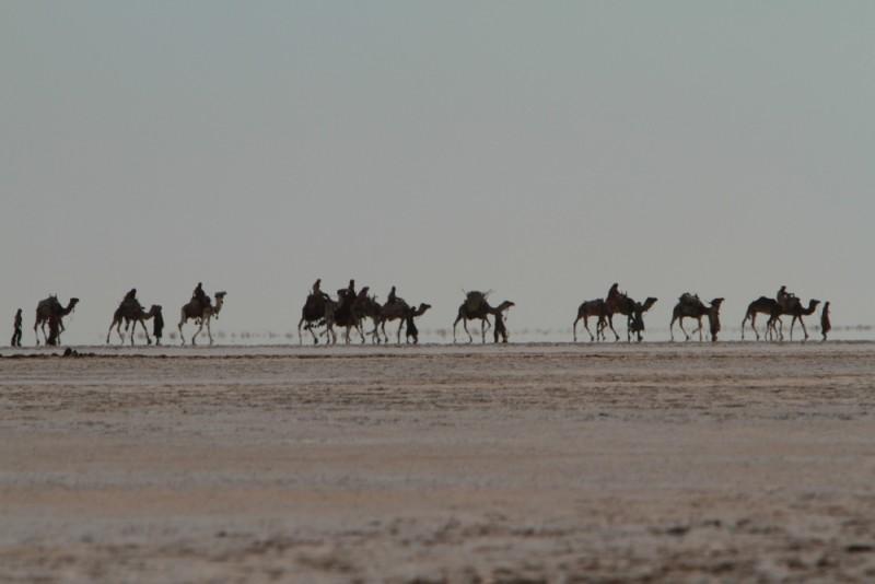 Il principe del deserto: una suggestiva scena del film