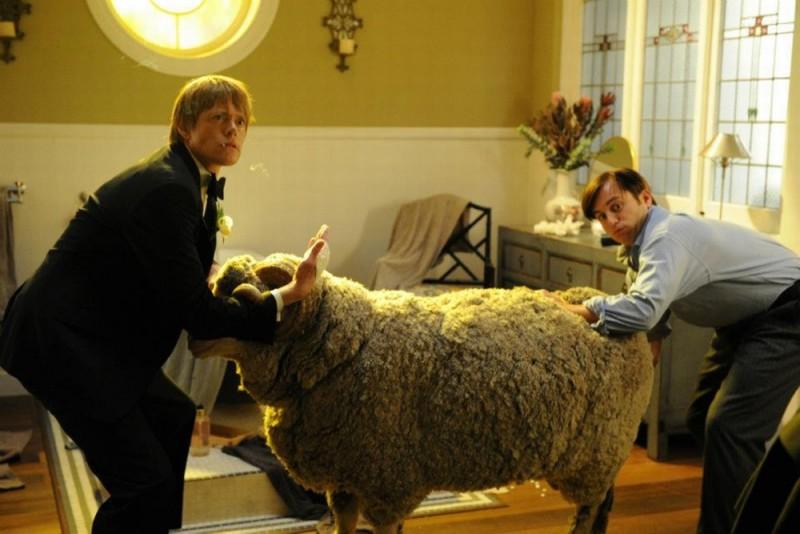 Tre uomini e una pecora: Kris Marshall e Kevin Bishop insieme al povero Ramsy in una scena del film