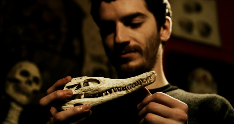 Lorenzo Pedrotti in Krokodyle