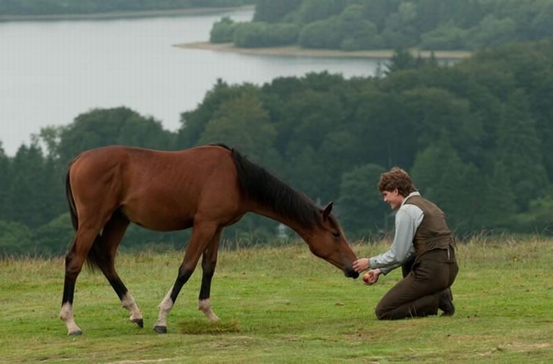 War Horse: Jeremy Irvine insieme al suo cavallo in una scena del film