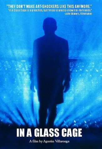 Tras el cristal: la locandina del film
