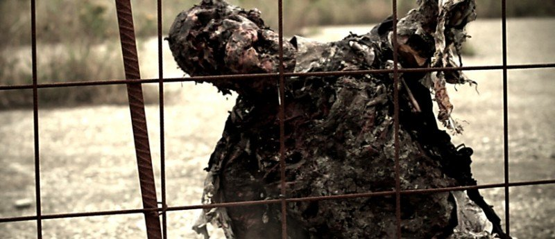 Uno zombie in azione tenta di attraversare la recinzione in Eaters