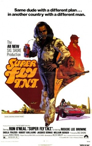 Super Fly T.N.T. - locandina del film